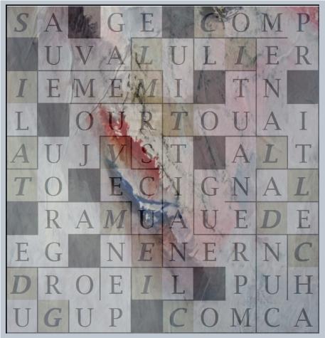 SAUVAGE LUI MEME - letcr10