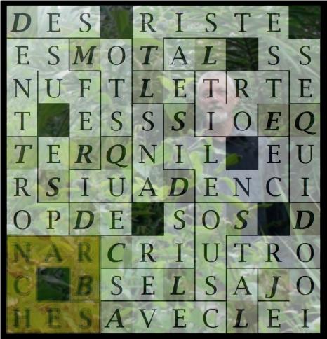 DES MOTS QUI SE REFUSENT - letcr1-exp