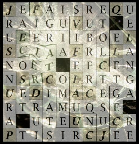 JE FAIS VIBRER CETTE CLOTURE - letcr1-exp