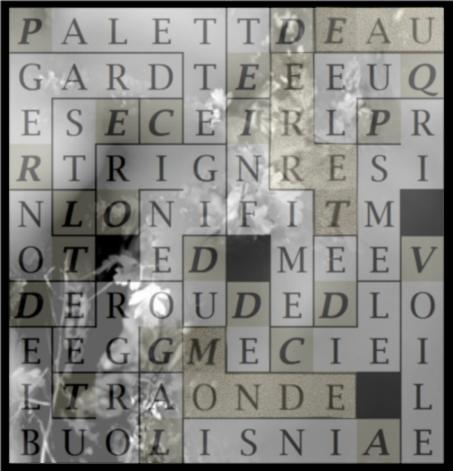 PALETTE INFIME DE CIEL DE TERRE - letcr1-exp