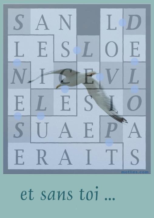 SANS LE VOL DE L OISEAU LE CIEL NE SERAIT PAS - carte 12a