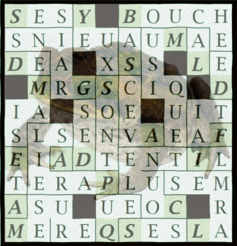 SES YEUX SONT PAREILS A DES GRAINS - letc1-exp