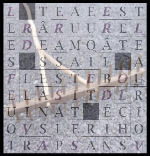 LE RÂTEAU RAMASSE DES - letcr1-exp