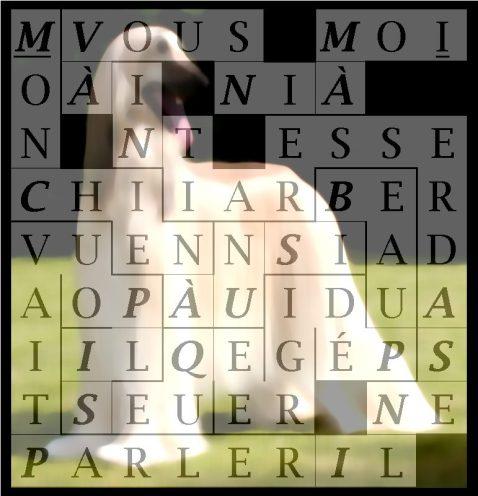 MON CHIEN À UN SI BEAU - letcr1-exp1