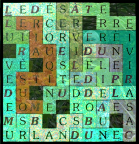 LE DÉCOR EST UNE MOUSTIQUAIRE - letcr1-exp