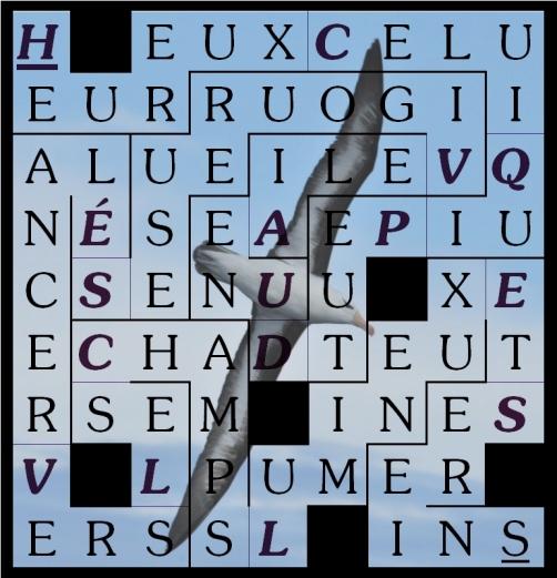 HEUREUX CELUI QUI PEUT D UNE AILE -letcr1-exp