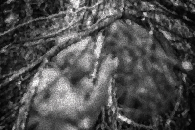 P16 - OUVRIT LA BOUCHE ET APAISA-image