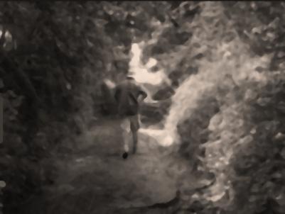 P20 - IL FALLAIT DONC S' ENFONCER-image