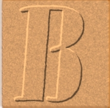 B-fi3g