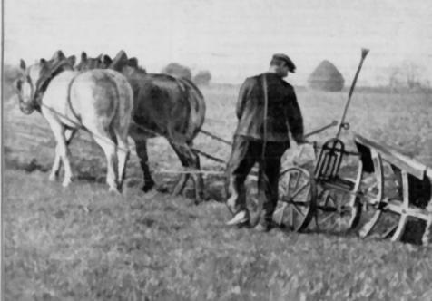 paysan labour